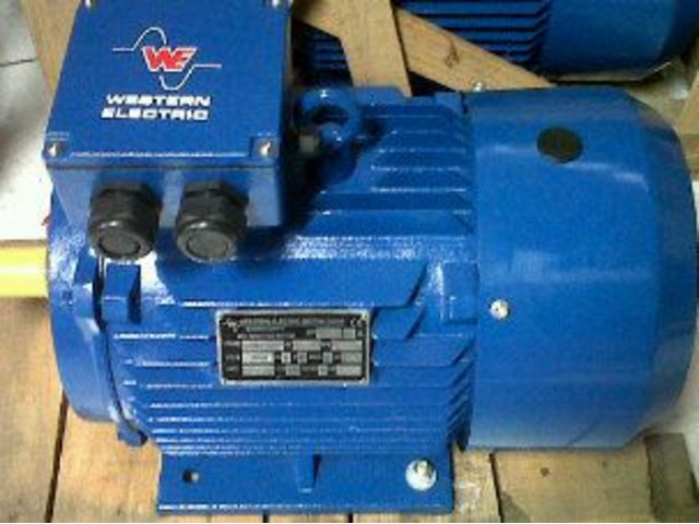 foot motor electric