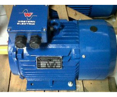 foot motor electric
